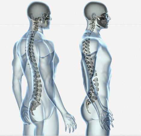 bend chiropractor